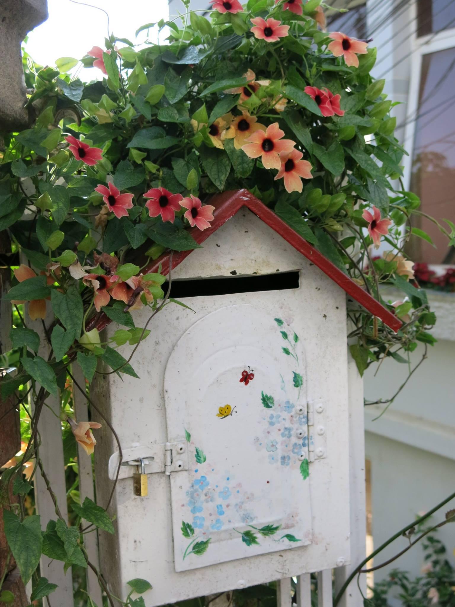Từ bi bao quanh ngôi nhà của tử tế và bình thản